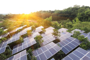 fermes à la fois agricoles et photovoltaïques